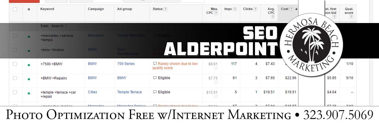 SEO Internet Marketing Alderpoint SEO Internet Marketing