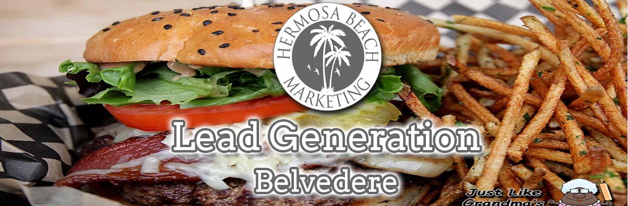 SEO Internet Marketing Belvedere SEO Internet Marketing