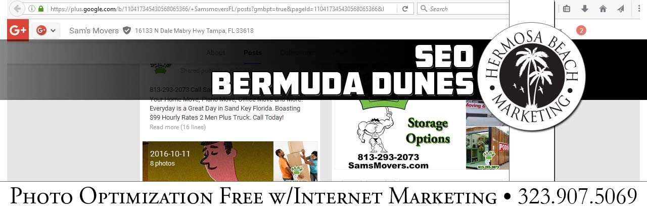 SEO Internet Marketing Bermuda Dunes SEO Internet Marketing