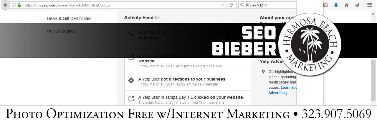 SEO Internet Marketing Bieber SEO Internet Marketing