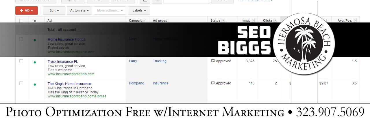 SEO Internet Marketing Biggs SEO Internet Marketing