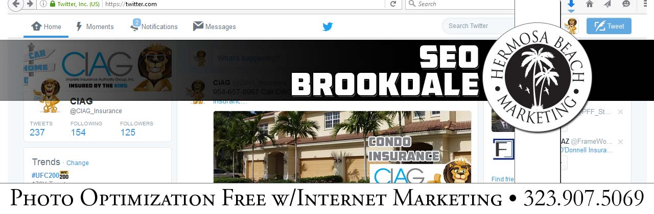 SEO Internet Marketing Brookdale SEO Internet Marketing