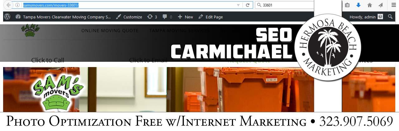 SEO Internet Marketing Carmichael SEO Internet Marketing