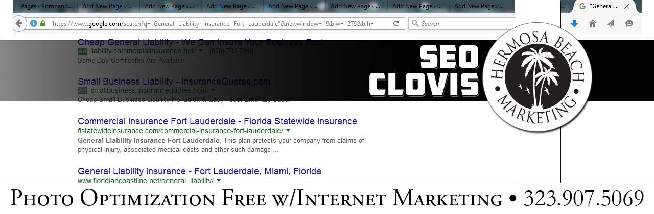 SEO Internet Marketing Clovis SEO Internet Marketing