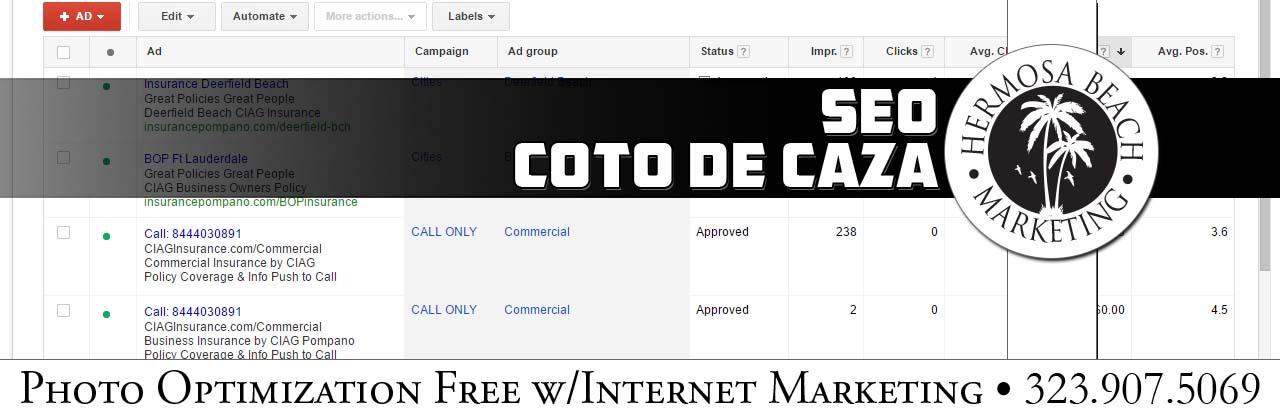 SEO Internet Marketing Coto de Caza SEO Internet Marketing