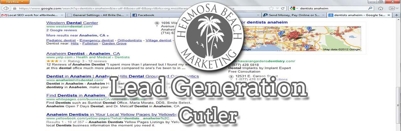 SEO Internet Marketing Cutler SEO Internet Marketing