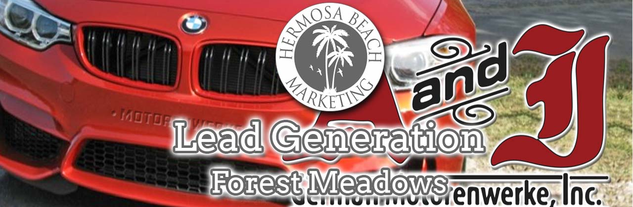 SEO Internet Marketing Forest Meadows SEO Internet Marketing
