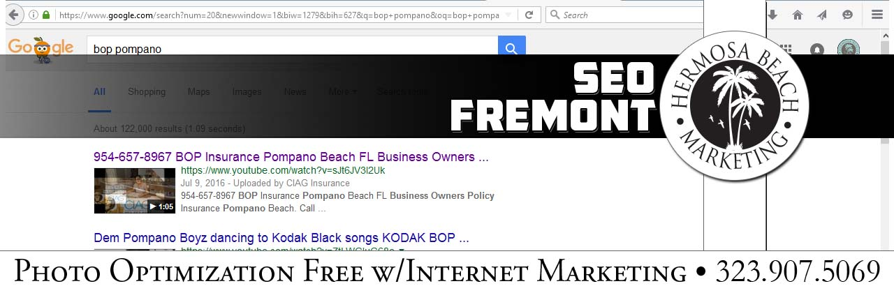 SEO Internet Marketing Fremont SEO Internet Marketing