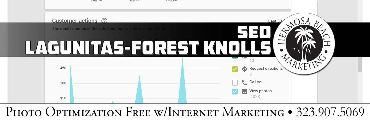 SEO Internet Marketing Lagunitas-Forest Knolls SEO Internet Marketing
