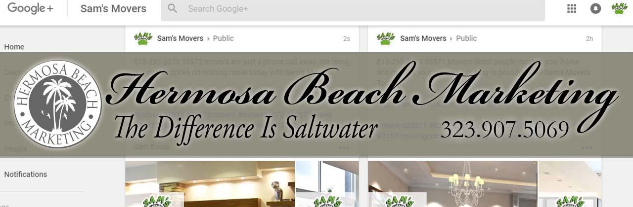 SEO Internet Marketing Livingston SEO Internet Marketing