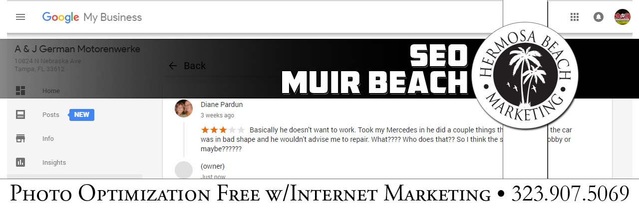 SEO Internet Marketing Muir Beach SEO Internet Marketing